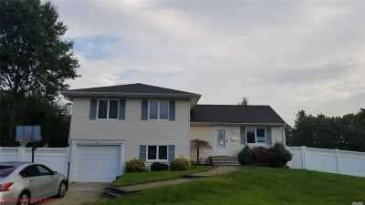 Seaford Single Family Home For Sale: 3993 Bernice Rd