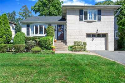Rockville Centre Single Family Home For Sale: 179 Lakeview Ave