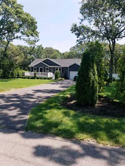 Selden Single Family Home For Sale: 17 Daisy Pl