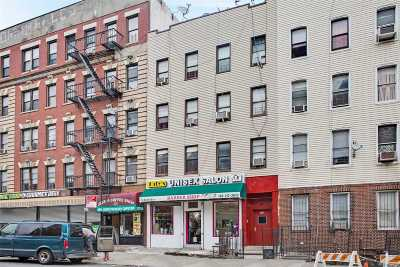 Brooklyn Multi Family Home For Sale: 225 Bushwick Ave