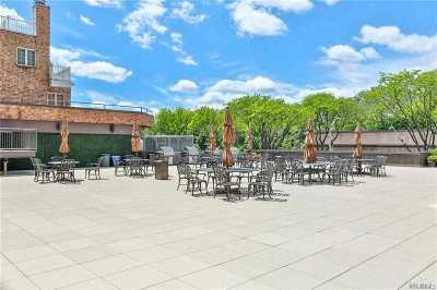 Westchester County Rental For Rent: 50 Columbus Avenue #B20