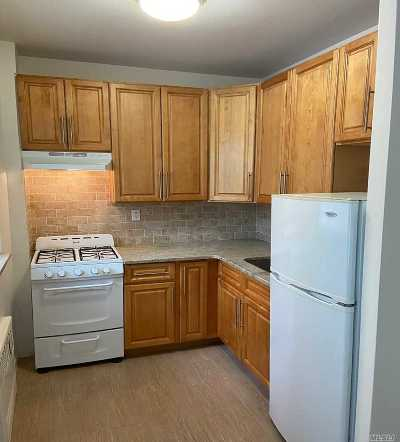 Rental For Rent: 99-52 66th Road #1H