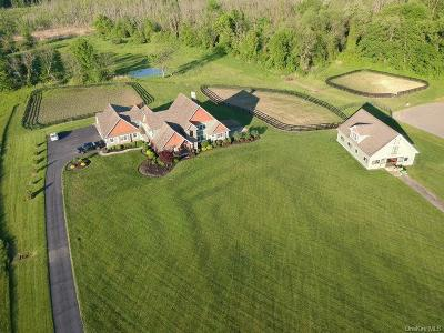 Dutchess County Single Family Home For Sale: 391 Shenandoah Road