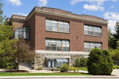 Westchester County Condo/Townhouse For Sale: 33 Roselle Avenue #A