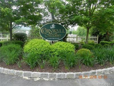 Putnam County Single Family Home For Sale: 111 Cornwall Meadows Lane