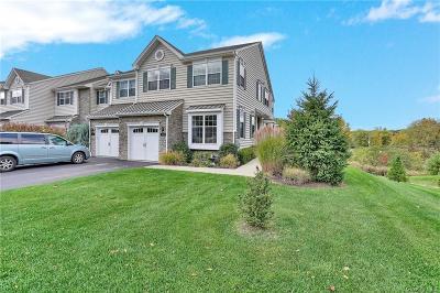 Dutchess County Single Family Home For Sale: 1329 Glastonbury Lane