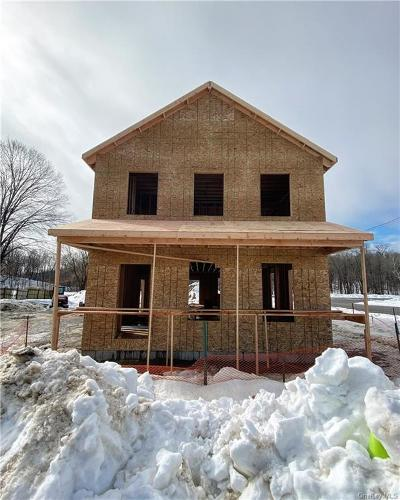Dutchess County Single Family Home For Sale: 37 Downey Avenue