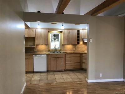 Putnam County Single Family Home For Sale: 17 South Street
