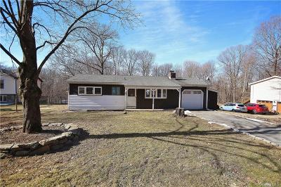 Putnam County Single Family Home For Sale: 139 Chief Nimham Circle