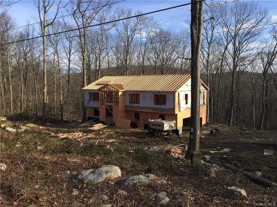 Dutchess County Single Family Home For Sale: 244 South Road