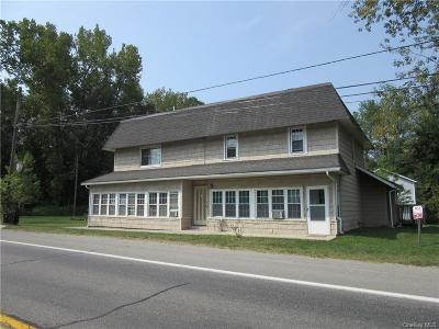 Dutchess County Rental For Rent: 1531 Route 22 #C
