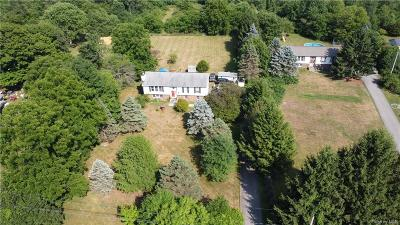 Dutchess County Single Family Home For Sale: 87 Robinson Lane