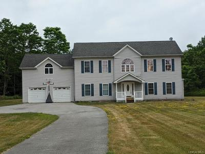 Dutchess County Single Family Home For Sale: 109 Grist Mill Lane