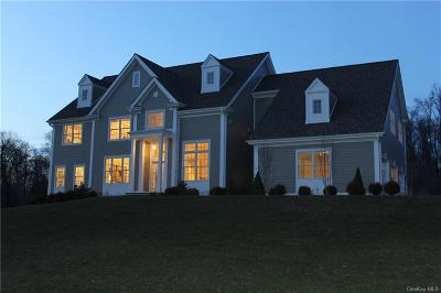 Putnam County Single Family Home For Sale: 47 Drewsclift Drive