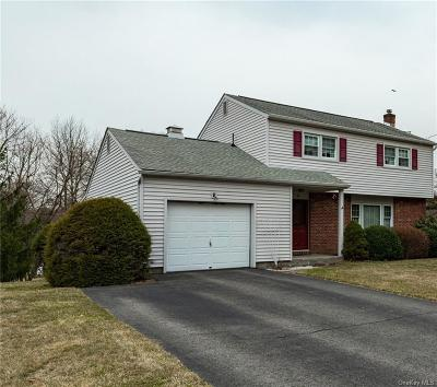Dutchess County Single Family Home For Sale: 4 Dennis Road