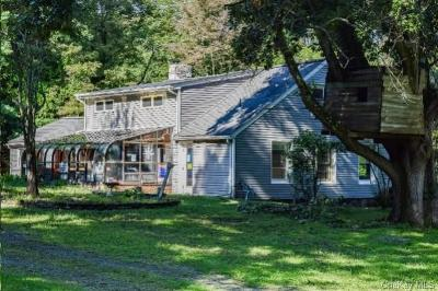 Dutchess County Single Family Home For Sale: 1015 Freedom Road