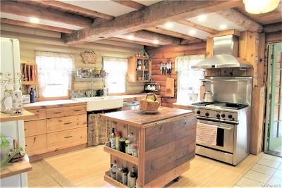 Dutchess County Single Family Home For Sale: 294 Creamery Road