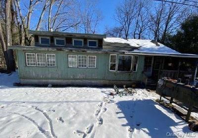 Dutchess County Single Family Home For Sale: 27 Dwy Lane