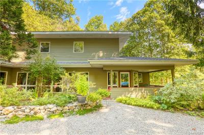 Putnam County Single Family Home For Sale: 58 Philipse Brook Road