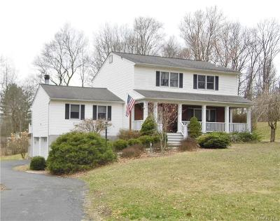 Dutchess County Single Family Home For Sale: 16 Argent Drive