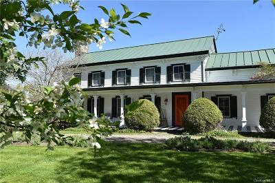 Dutchess County Single Family Home For Sale: 915 Turkey Hill Road