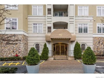 Westchester County Rental For Rent: 410 Westchester #313