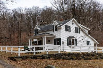Dutchess County Rental For Rent: 611 SE Mountain Road