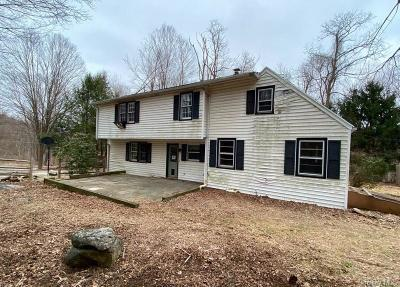 Putnam County Single Family Home For Sale: 4030 Old Route 22