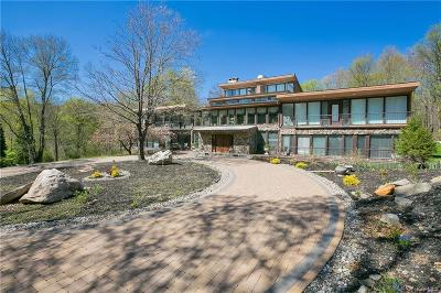 Putnam County Single Family Home For Sale: 14 Dancing Rock Road