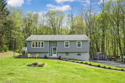 Dutchess County Single Family Home For Sale: 40 Indian Pass