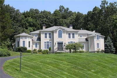 Dutchess County Single Family Home For Sale: 25 Kimlin Court
