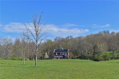 Dutchess County Single Family Home For Sale: 555 Milan Hill Road