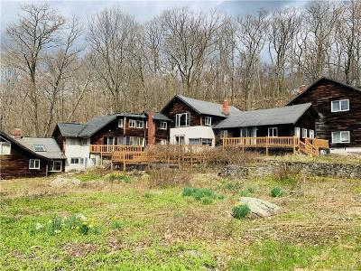 Putnam County Single Family Home For Sale: 584 Milltown Road