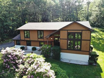Dutchess County Single Family Home For Sale: 27 Farview Road