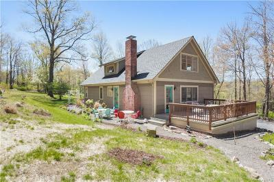 Putnam County Single Family Home For Sale: 784 Old Albany Post Road