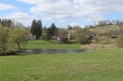 Dutchess County Single Family Home For Sale: 153 Frog Hollow Road