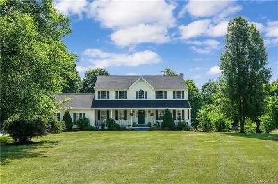 Putnam County Single Family Home For Sale: 19 Ridge View Drive