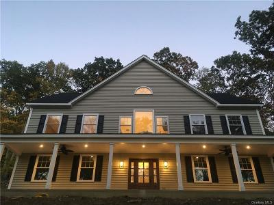 Dutchess County Single Family Home For Sale: 58 Route 292