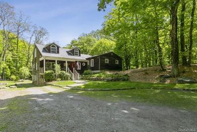 Westchester County Single Family Home For Sale: 69 Buckout Road