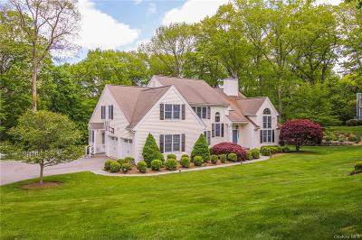 Westchester County Single Family Home For Sale: 17 Mianus Bluff Drive