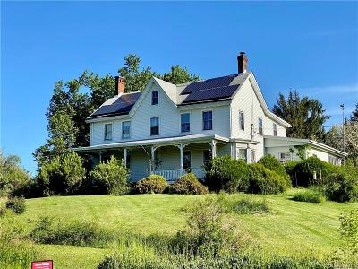 Dutchess County Single Family Home For Sale: 234 Baxtertown Road