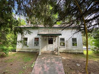 Putnam County Single Family Home For Sale: 24 Peekskill Hollow Road