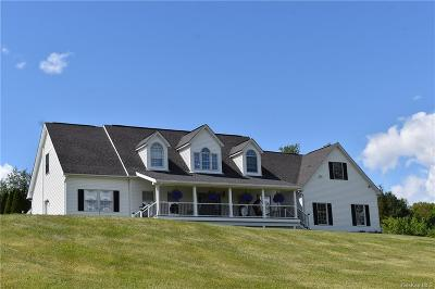 Dutchess County Single Family Home For Sale: 15 Camby Road