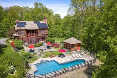 Dutchess County Single Family Home For Sale: 24 Buttonwood Lane