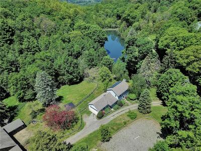 Dutchess County Single Family Home For Sale: 540-542 Gardner Hollow Road
