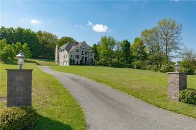 Dutchess County Single Family Home For Sale: 13 Trinity Way