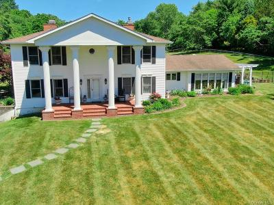 Dutchess County Single Family Home For Sale: 48 Rymph Road