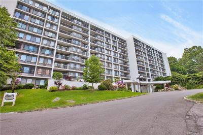 Westchester County Condo/Townhouse For Sale: 100 High Point Drive #214