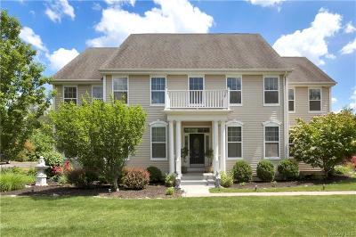 Dutchess County Single Family Home For Sale: 240 Buttonwood Way