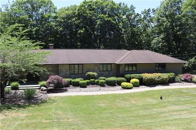 Dutchess County Single Family Home For Sale: 14 King Road